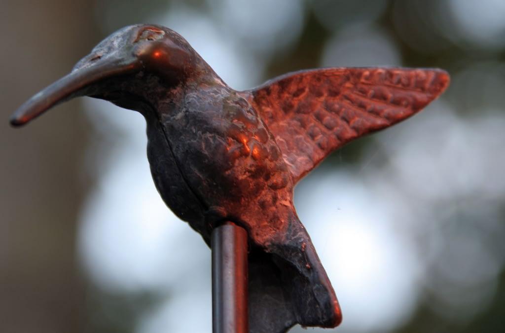 Google's new Hummingbird algorithm update